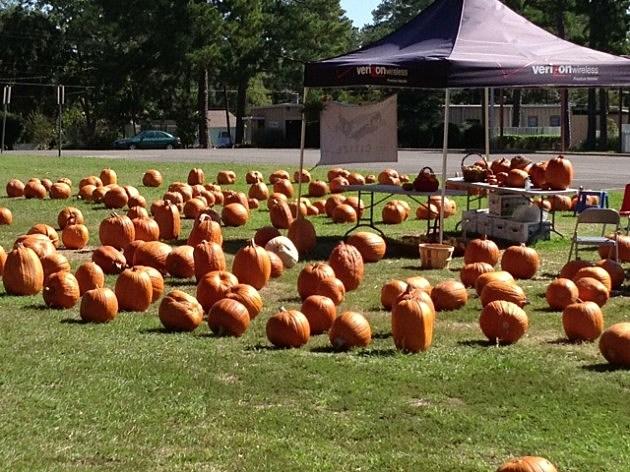 pumpkins st pats one