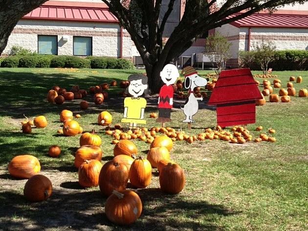 pumpkins st pats two