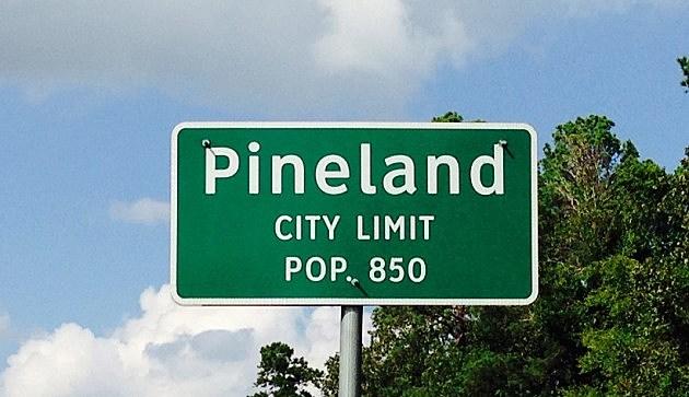 pineland city limit