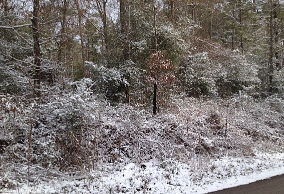 east texas snow 0128