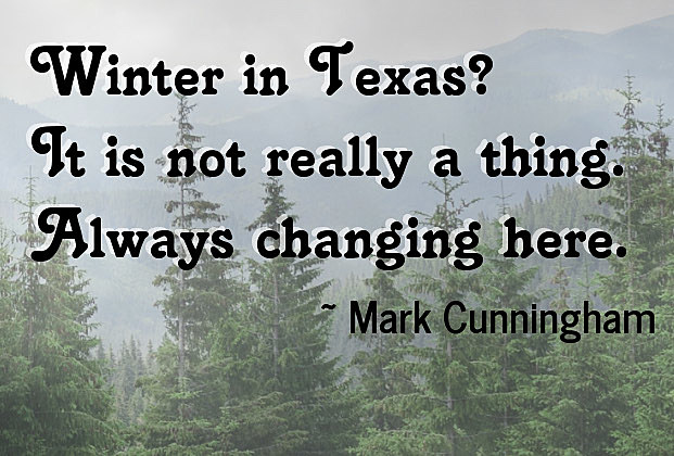 Haiku Poems Inspired By The East Texas Winters