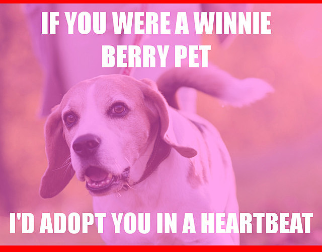 winnie berry
